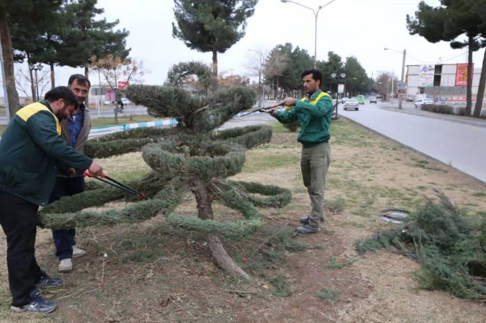 اجرای طرح زیبا سازی فضای سبز توسط شهرداری نیشابور